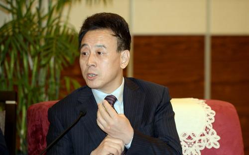 魏宏会见世界500强企业代表